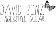 David Senz Gitarre